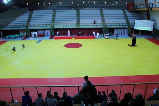 Tatami de l'institut du judo