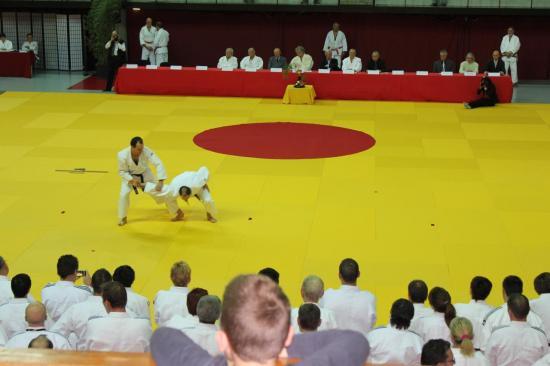 Démonstrations de katas de ju-jitsu